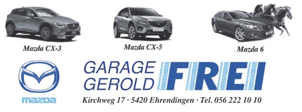 Garage Gerold Frei 2
